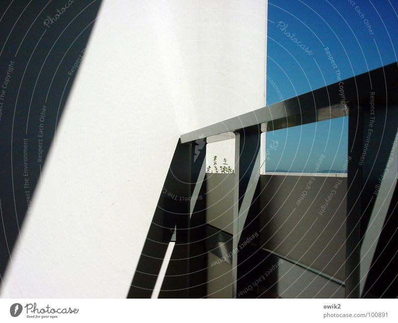 Thymians Corner Balcony Light Wall (building) Balcony plant Feeble Shadow Sky Blue Handrail Thyme