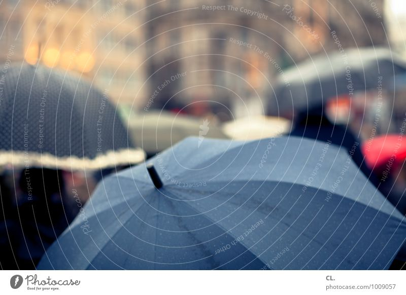 rain Human being Group Drops of water Autumn Winter Climate Weather Bad weather Pedestrian Umbrella Going Wet Town Wanderlust Colour photo Exterior shot Day