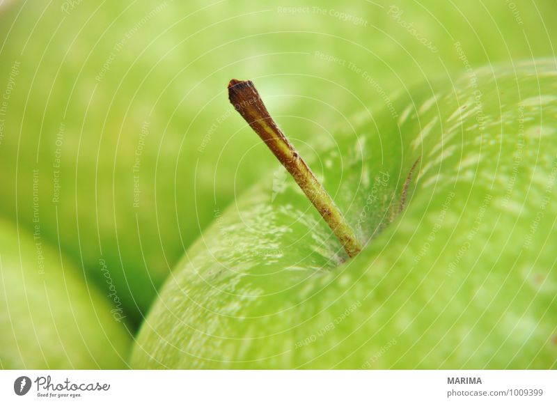 Nature Green Environment Food Fruit Fresh Nutrition Delicious Apple Mature Vegetarian diet Raw Ingredients Apple skin