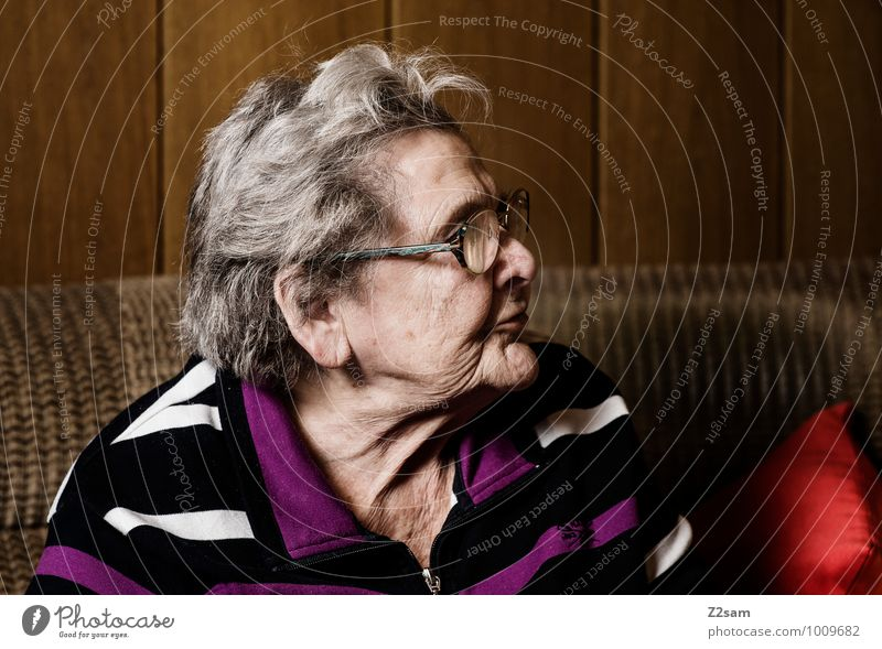 Woman Old Loneliness Calm Life Senior citizen Feminine Natural Healthy Dream Sit 60 years and older Perspective Observe Transience Eyeglasses