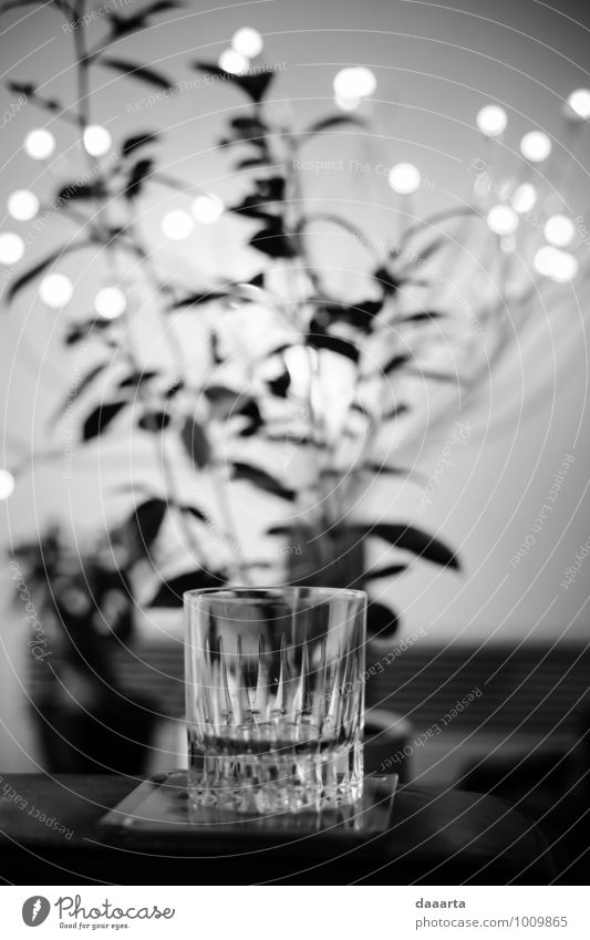 moment Beverage Cold drink Alcoholic drinks Spirits Whiskey Whiskey glass Lifestyle Style Joy Leisure and hobbies Adventure Freedom Flat (apartment) Lamp Sofa