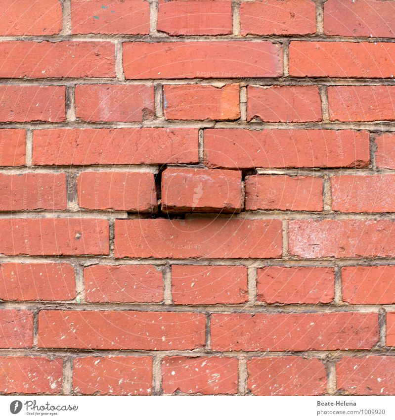another brick in the wall Living or residing House building Redecorate House (Residential Structure) Manmade structures Wall (barrier) Wall (building) Brick