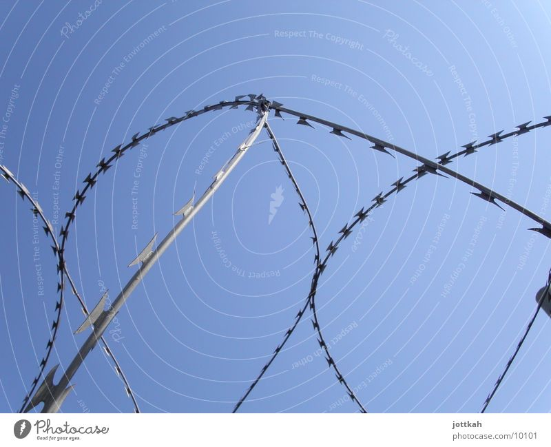 Sky Blue Freedom Safety Protection Fence Captured Barrier Safety (feeling of) Blue sky Penitentiary Thorn Collateralization Barbed wire Deprivation of liberty