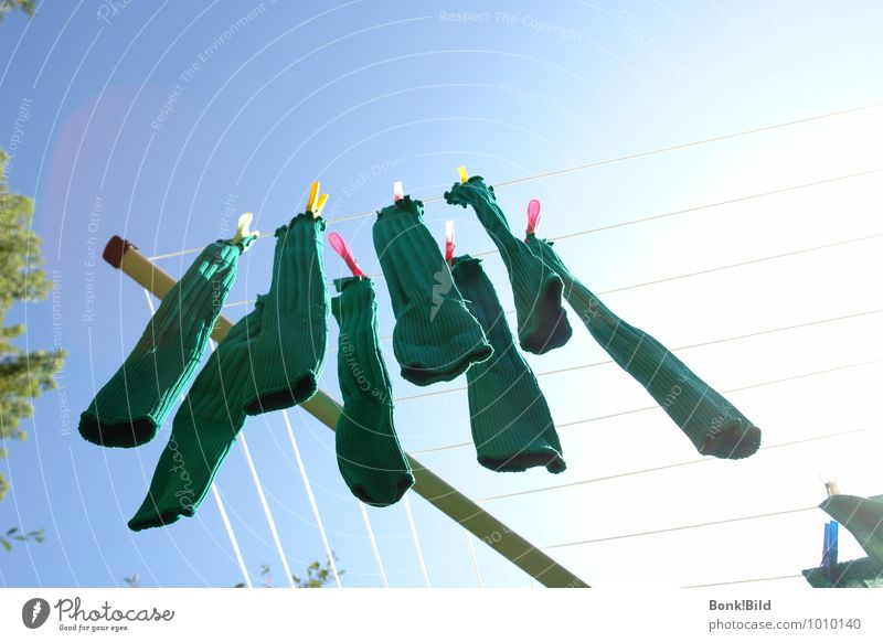 football socks Leisure and hobbies Soccer Sports Ball sports Sports team Fragrance Hang Cleaning Threat Dirty Success Blue Green Happy Joie de vivre (Vitality)