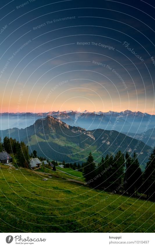 Rigi Scheidegg Environment Nature Landscape Sky Cloudless sky Night sky Horizon Sun Sunrise Sunset Sunlight Summer Autumn Weather Beautiful weather Fog Meadow