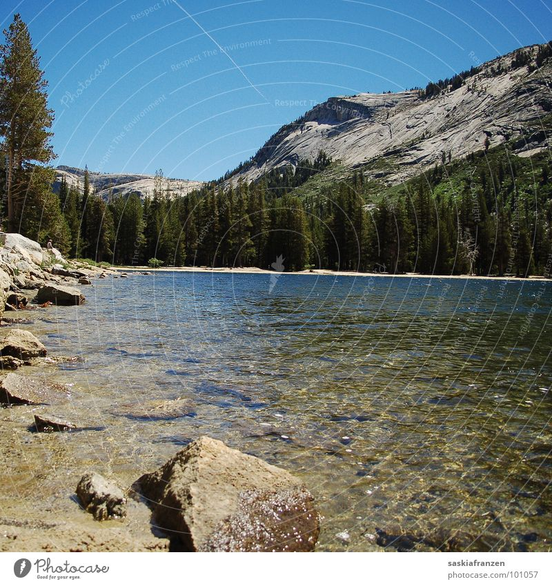 Yosemite II Lake Tree Green Airplane Body of water Dream Untouched USA Clarity Mountain Stone Rock Water Coast Sky Blue Nature Landscape Life