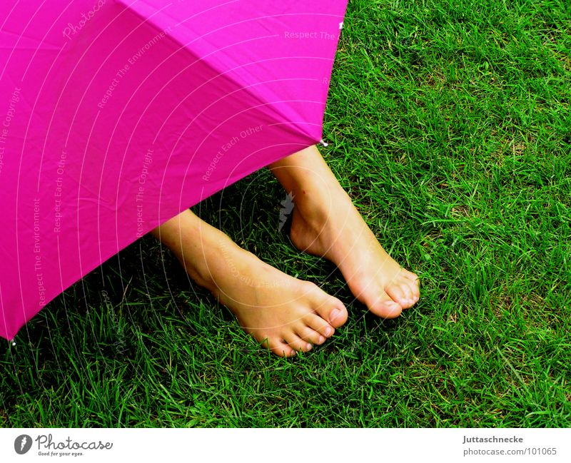 covert Pink Grass Green Human being Rain Safety Umbrella umbrellas Hide hidden Hiding place Feet foot Garden Mysterious rainy