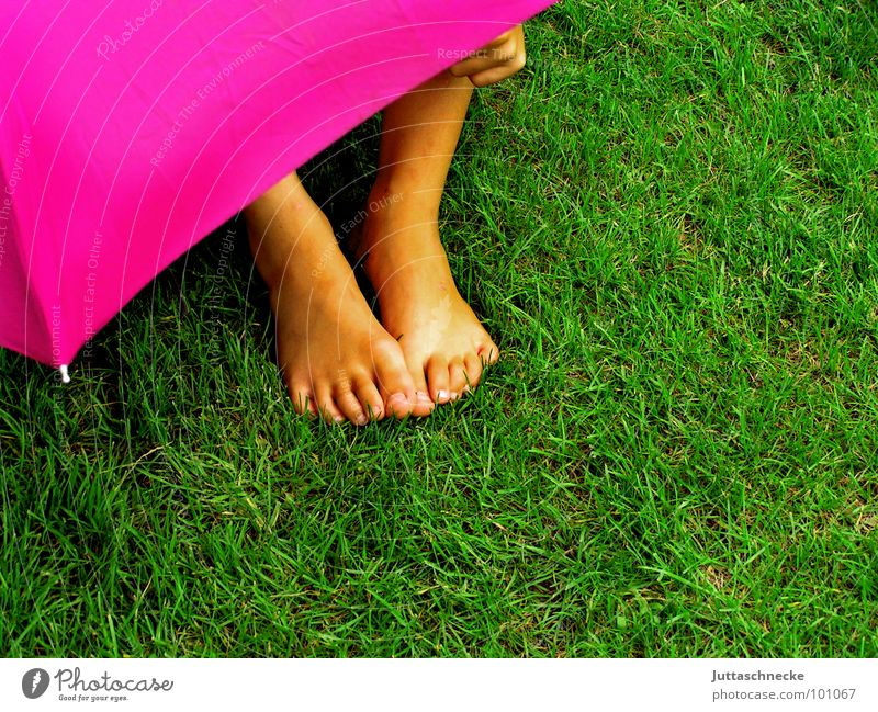 Hidden II Pink Grass Green Human being Rain Child Umbrella umbrellas Hide hidden Hiding place Feet foot Garden Mysterious rainy