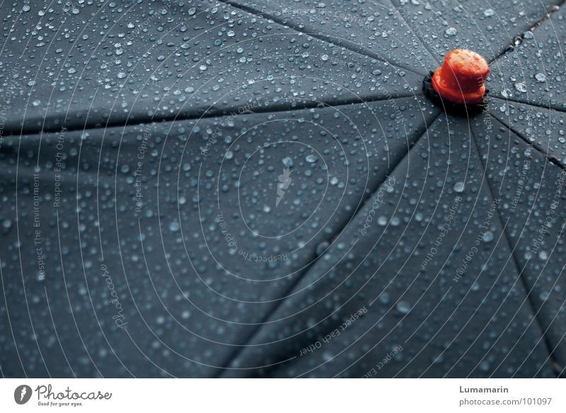 Water Red Gray Rain Weather Wet Drops of water Star (Symbol) Clothing Stop Middle Umbrella Stalk Deep Thunder and lightning