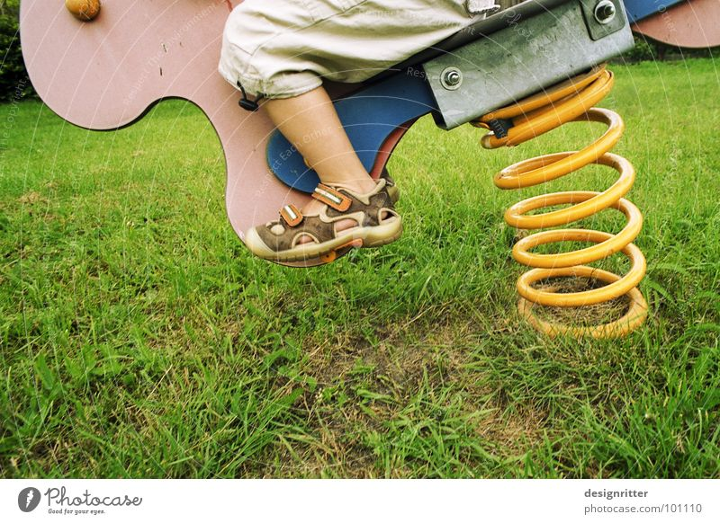 cowboy Swing Playground Child Playing Grass Meadow Seesaw Bird Spiral Yellow Action Boy (child) Lawn Feather suspension Wild animal Dynamics