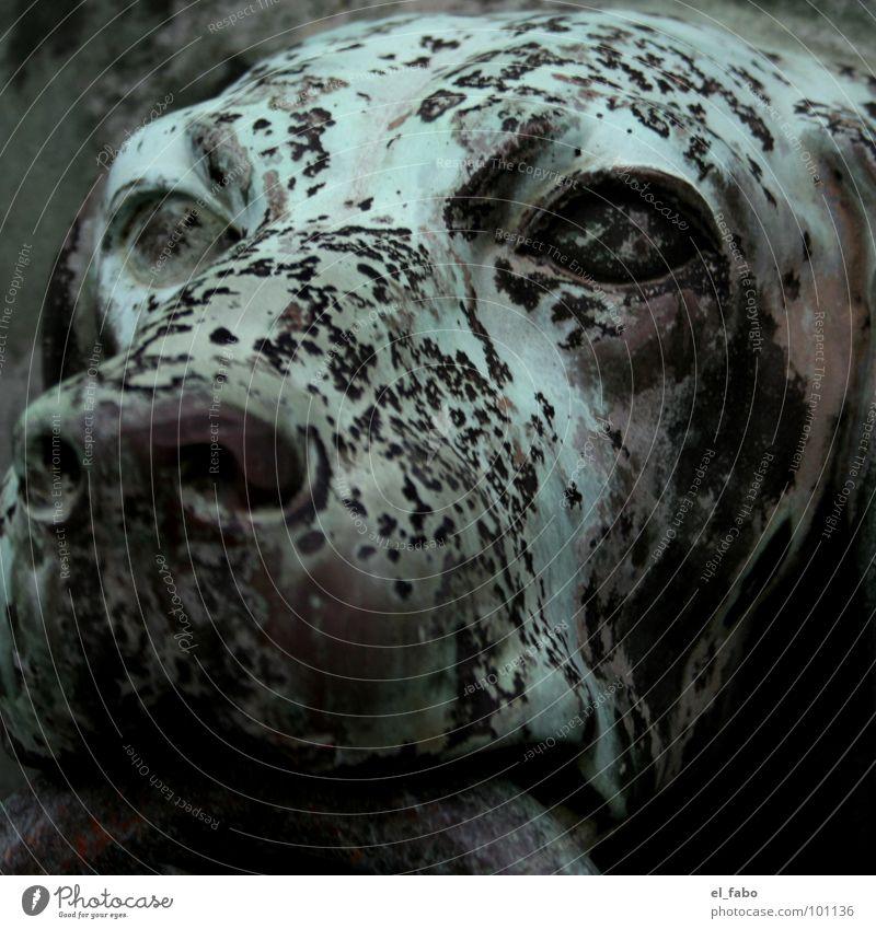 Green Eyes Dog Metal Door Circle Gate Castle Historic Patch Iron Snout Animal Bronze