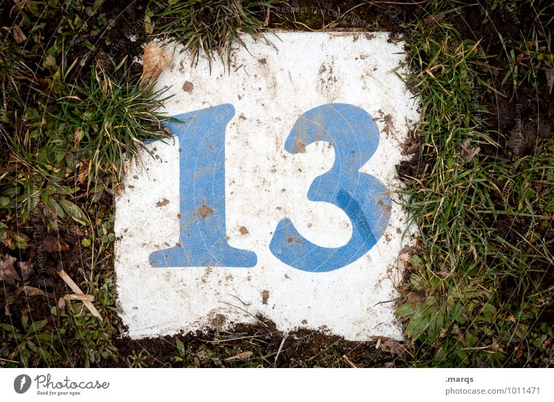 friday the 13. Meadow Digits and numbers Dirty Lucky number Popular belief Colour photo Exterior shot Close-up Deserted Day Bird's-eye view