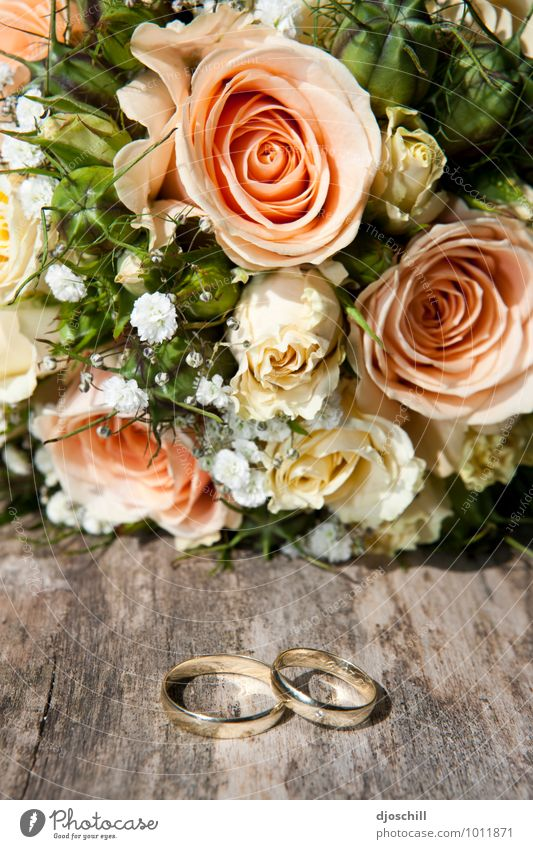marryme Design Wedding Jewellery Ring Wood Metal Gold Sign Love Beautiful Natural Emotions Joy Happy Safety (feeling of) Sympathy Compassion Honest Hope