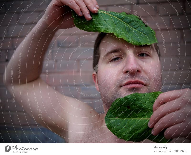 Human being Youth (Young adults) Plant Green Hand Leaf Eroticism Young man 18 - 30 years Healthy Eating Black Adults Face Eyes Wall (barrier) Gray