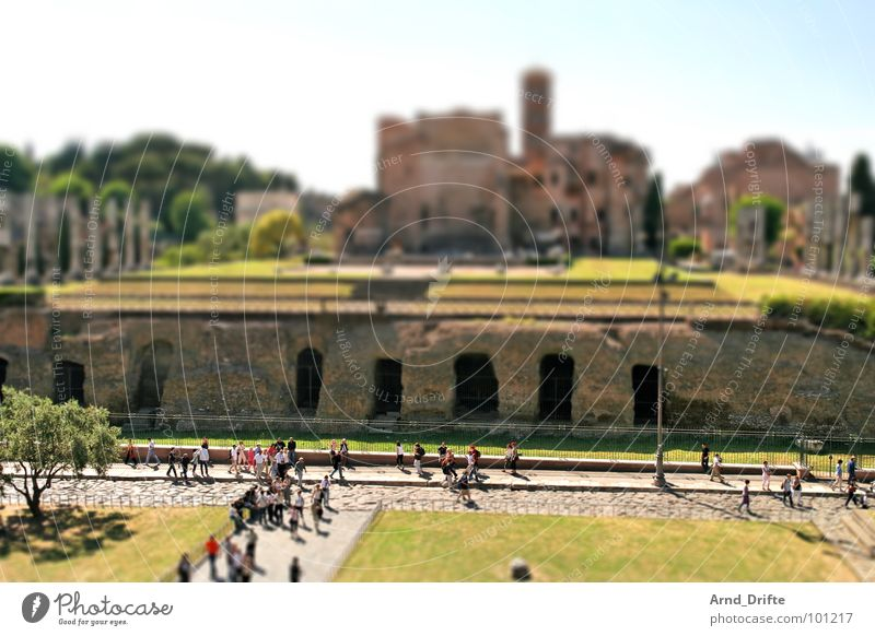 Human being Green Summer Brown Small Monument Ruin Landmark Surrealism Tourist Italy Rome Miniature Tilt-Shift