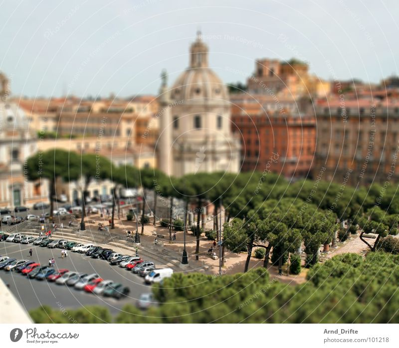 Human being Green Brown Small Monument Italy Ruin Landmark Surrealism Tourist Rome Miniature Pattern Tilt-Shift