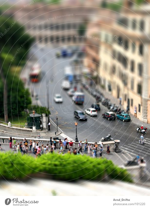 Human being Green City Bird's-eye view Street Car Brown Small Italy Monument Ruin Landmark Surrealism Tourist Rome Miniature