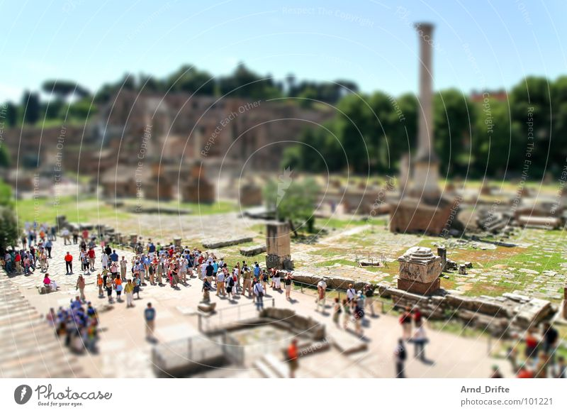 Human being Green Brown Small Monument Ruin Landmark Surrealism Tourist Rome Miniature Italy Tilt-Shift