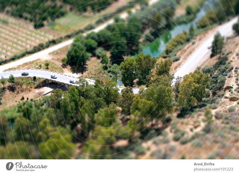 Tree Green Street Landscape Brown Small Europe River Brook Surrealism Miniature Tilt-Shift Andalucia