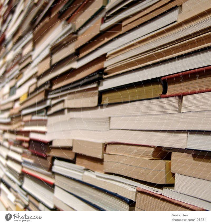 Book Search Paper Arrangement Reading Education Letters (alphabet) Media Side Stack Find Heap Work of art Reader Formulated Waste paper