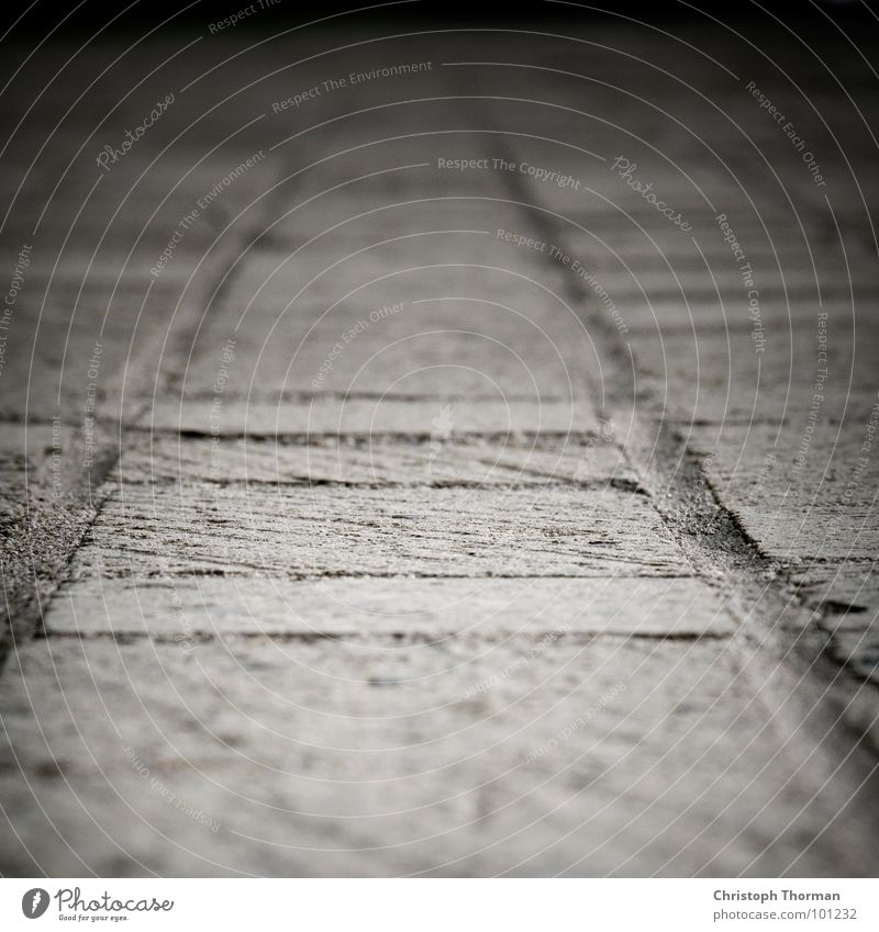 A stony path Blur Depth of field Vanishing point Gray Direction Macro (Extreme close-up) Close-up Detail Lanes & trails Central perspective Copy Space top