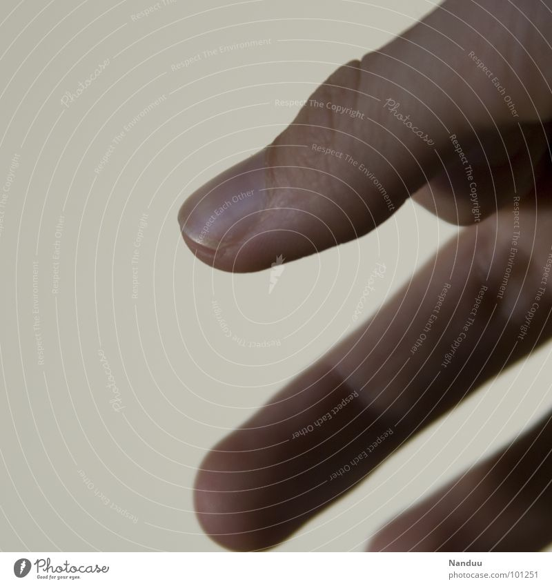 Human being Hand Line Bright Fingers Stripe Diagonal Thumb Fingernail Indicate Section of image Parts of body Minimalistic Macro (Extreme close-up)