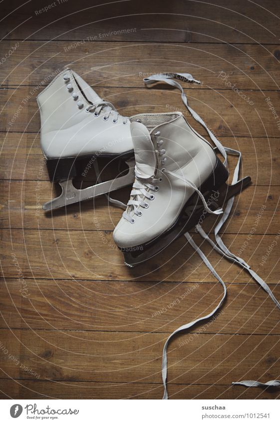 out on the ice ... Leisure and hobbies Sports Winter sports Ice-skating Wood Healthy Figure skating Ice-skates Blade Shoelace Wooden floor Colour photo