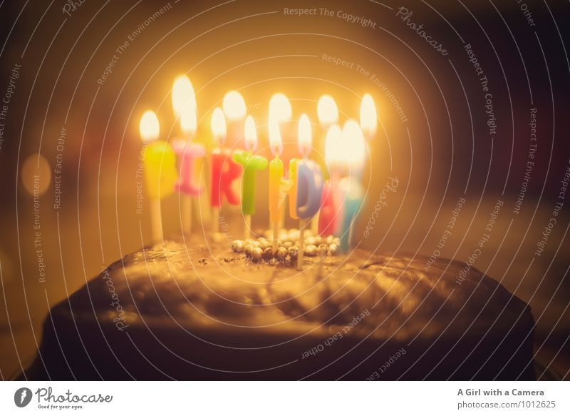 to you Cake Eating Candle Congratulations Birthday Candlelight birthday candles Birthday cake Birthday wish Subdued colour Interior shot Detail Deserted