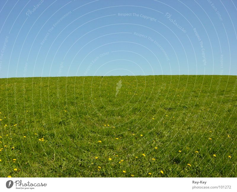 Nature Beautiful Sky Green Blue Meadow Grass Landscape Horizon