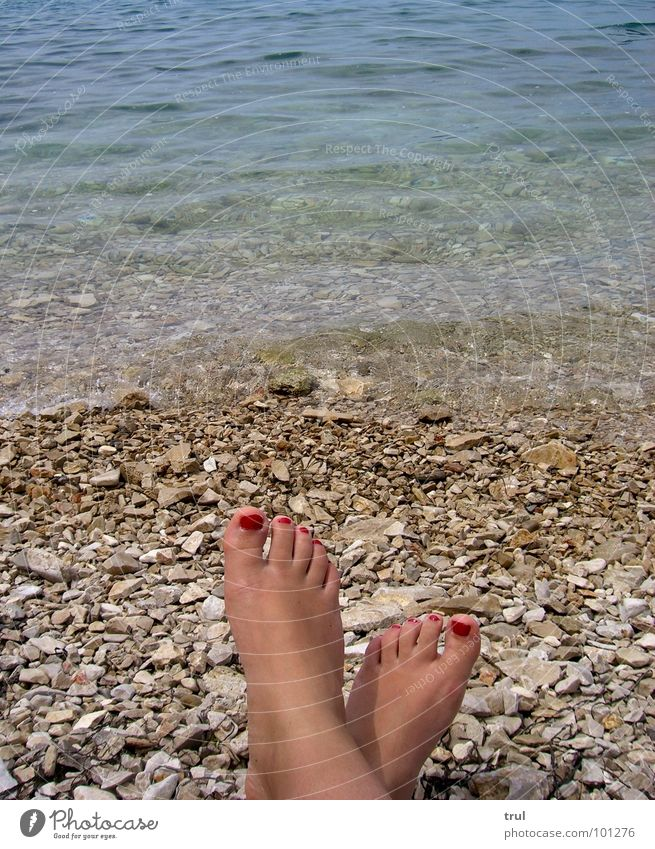 Water Ocean Summer Relaxation Freedom Stone Feet Leisure and hobbies Cosmetics Nail polish