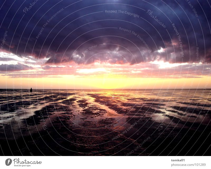 Sky Water Beautiful Sun Ocean Colour Clouds Freedom Lanes & trails Horizon Germany Contentment Europe Infinity Sign North Sea