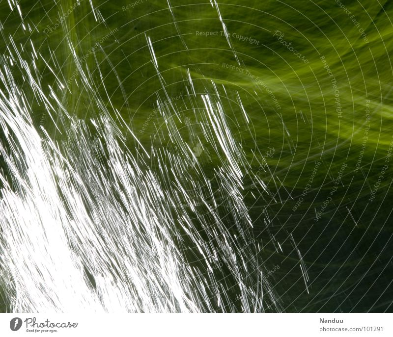 light painting Light Green Glittering White Abstract Background picture Line Painting and drawing (object) Brook Chirping Sunlight Long exposure Leaf Current