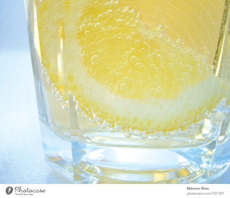Water Sun Summer Cold Glass Fruit Fresh Beverage Cool (slang) Drinking Gastronomy Refreshment Lemon Thirst Citrus fruits Tingle