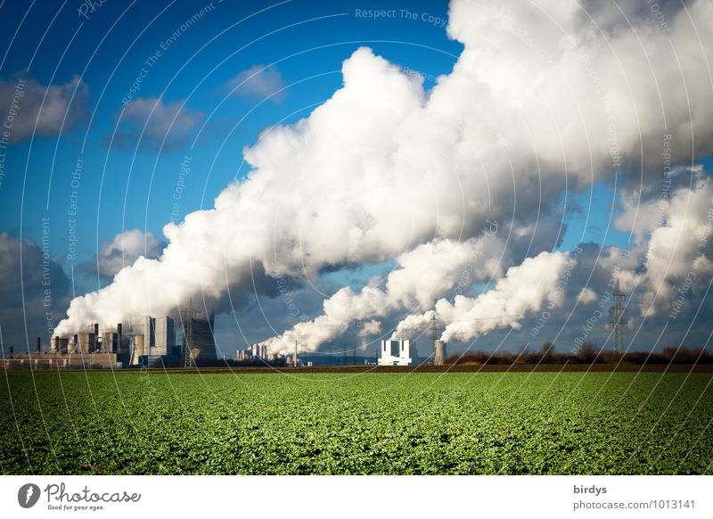Coal-fired power plant Climate change Agriculture Forestry Industry Energy industry Coal power station Beautiful weather Field Smoking Authentic Threat Gigantic