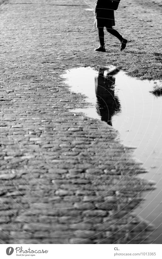 mirroring Human being Feminine Woman Adults Life Legs 1 Environment Water Autumn Winter Climate Climate change Weather Bad weather Rain Puddle Cobblestones
