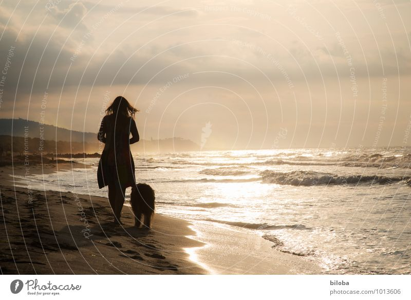 Woman with dog relaxing on the beach in the evening Beach Lifestyle Waves Harmonious Well-being Contentment Relaxation Calm Fragrance Leisure and hobbies Ocean