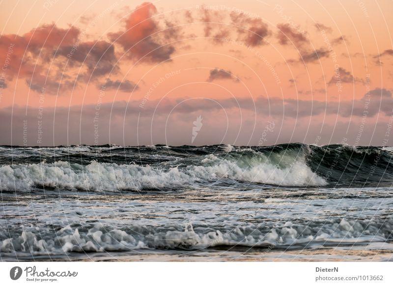 Sky Nature White Water Clouds Black Coast Horizon Weather Orange Waves Wind Force Beautiful weather Baltic Sea Gale