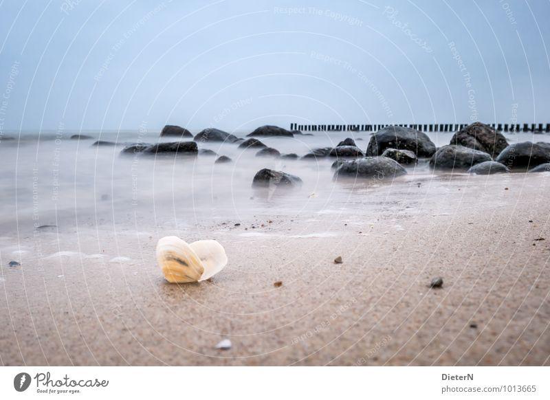 Sky Nature Blue White Water Ocean Landscape Beach Black Coast Wood Stone Sand Brown Rock Horizon