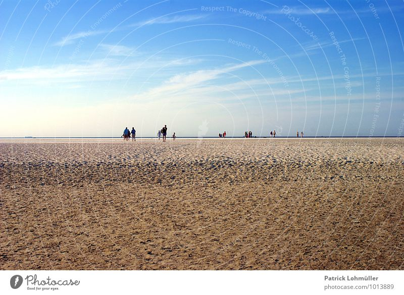 Beach Walker Langeoog Human being Adults Body Group Nature Landscape Sand Sky Summer Beautiful weather Coast North Sea Island East frisian island Federal eagle