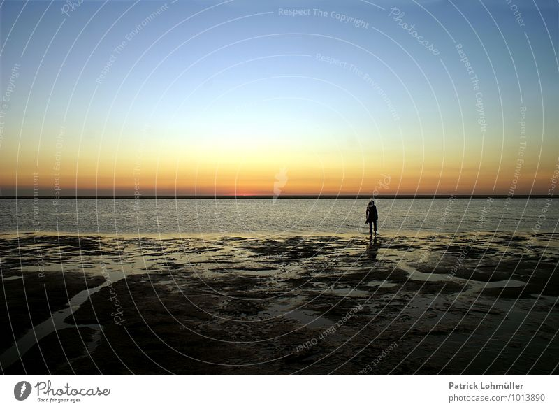 Human being Sky Nature Water Summer Relaxation Loneliness Landscape Calm Beach Adults Movement Coast Feminine Going Moody