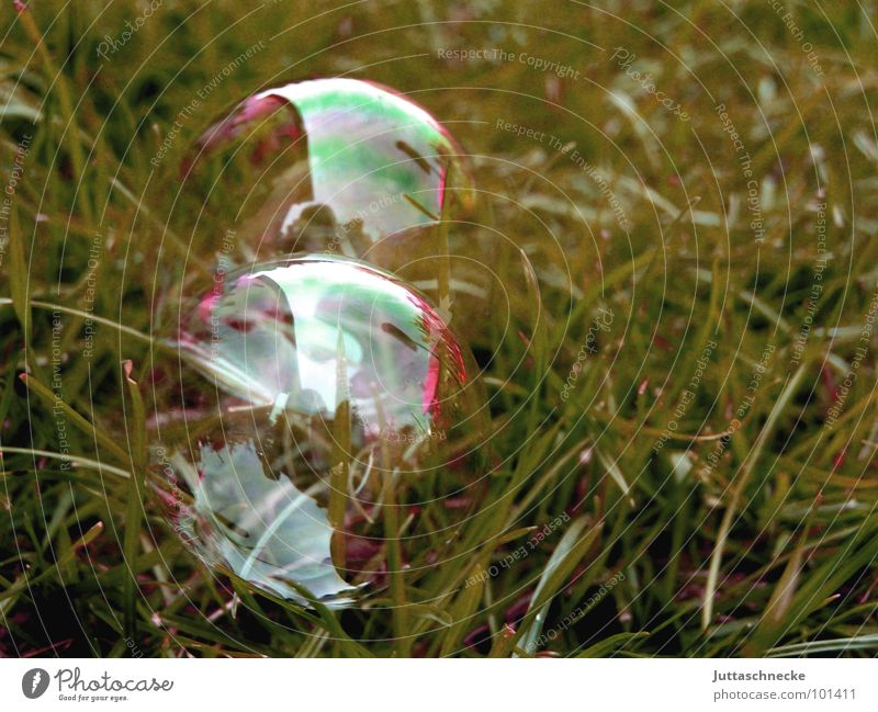 Blue Red Summer Joy Yellow Colour Playing Garden Glittering Glass Sphere Bubble Transparent Soap bubble Rainbow Double exposure