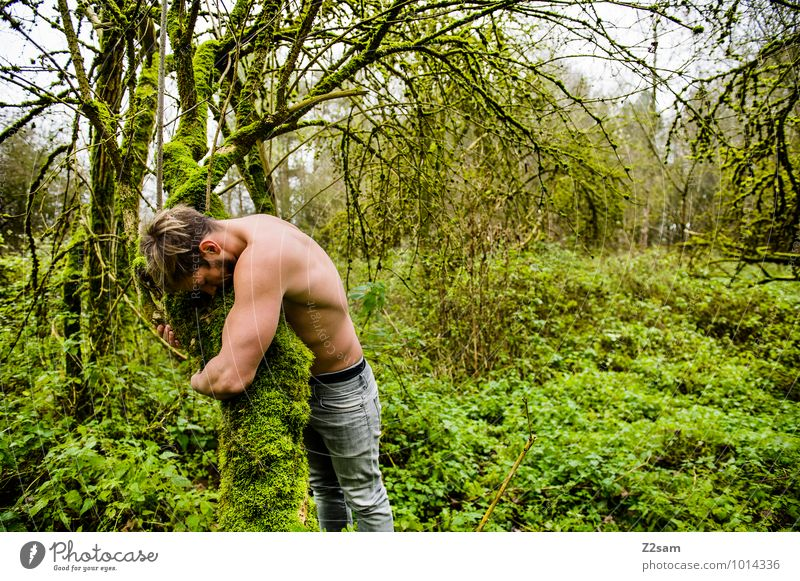 Close to nature Masculine Young man Youth (Young adults) 30 - 45 years Adults Environment Nature Landscape Summer Autumn Beautiful weather Tree Bushes Moss