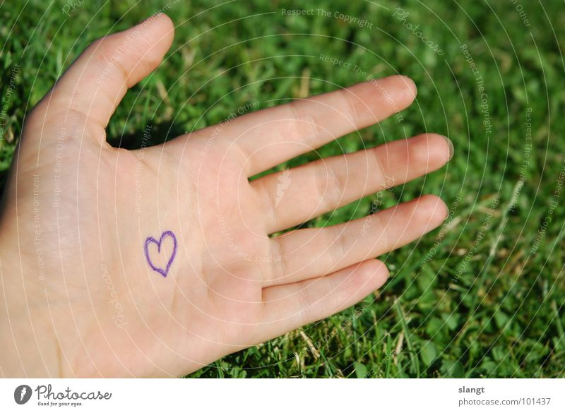 warmly Love Lovely Relationship Sweet Like Hand Fingers Grass Green Heart inlove pair Couple Treasure Garden Love you