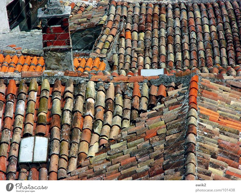 Old Red House (Residential Structure) Building Idyll Simple Roof Historic Many Old town Chimney Mediterranean sea Town Croatia Populated Roofing tile