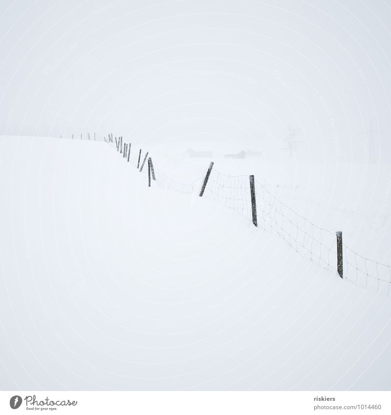 WHITE OUT Environment Nature Landscape Winter Weather Snow Snowfall Hill Fence Free Cold White Calm Longing Loneliness Freedom Idyll Lanes & trails