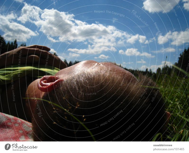 Man Hand Sky Summer Clouds Relaxation Grass Dream Head Contentment Sleep Break Peace Leisure and hobbies Sunday Peaceful