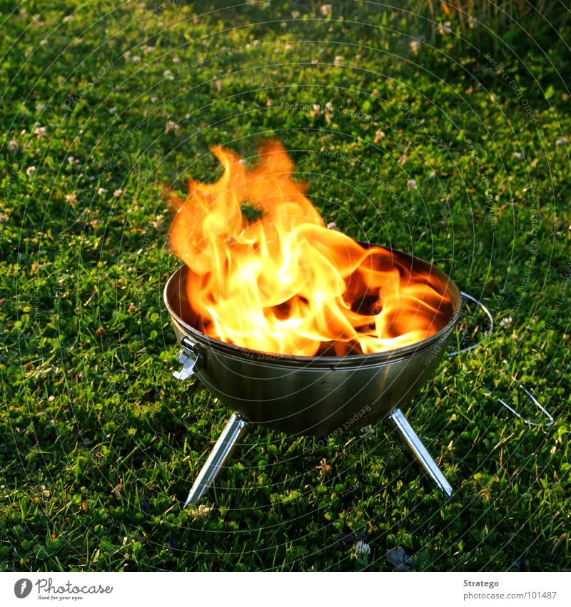 Summer Black Yellow Meadow Nutrition Wood Garden Warmth Blaze Fire Cooking & Baking Physics Hot Smoke Barbecue (event) Flame