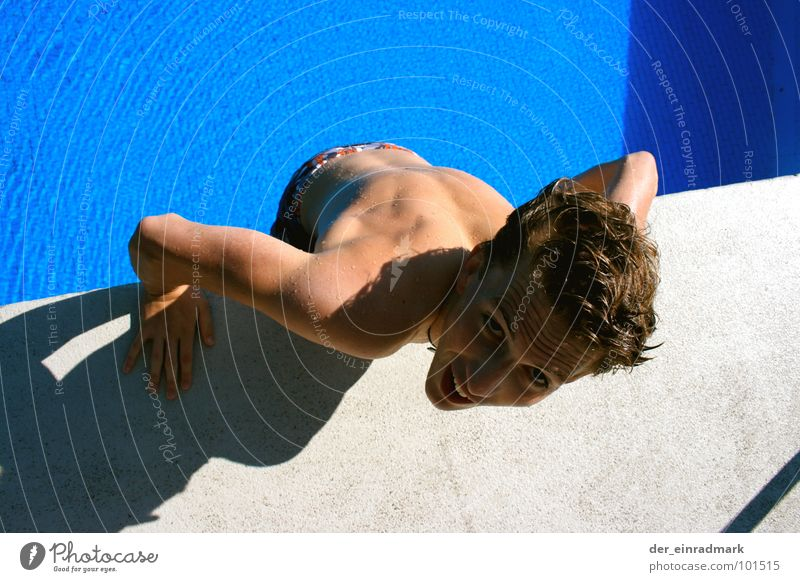 Water Blue Jump Laughter Gray Head Lanes & trails Fear Body Funny Wet Concrete Swimming pool Hind quarters Panic Edge