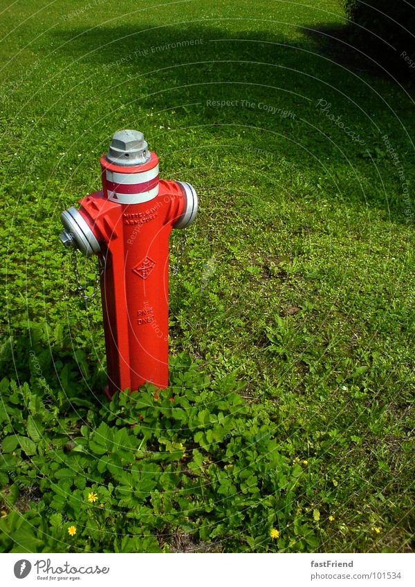 who is angry remains alone Fire hydrant Meadow Red Green Erase Clover Extra Summer Extinguisher Loneliness Individual Screw Landmark Monument Obscure Metal