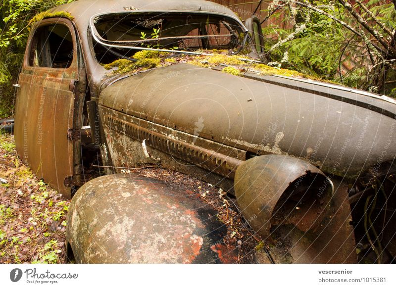 end of the road 6 Car Vintage car Old Broken Grief Senior citizen Esthetic End Nostalgia Environmental pollution Decline Transience Insurance Destruction